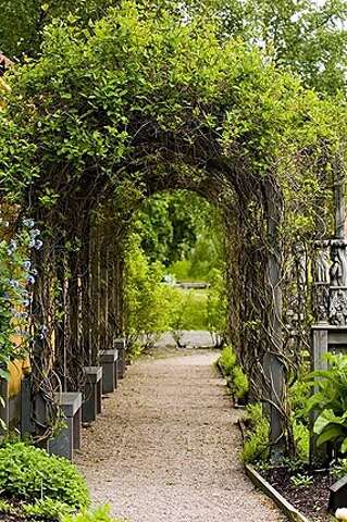 Renaissance garden grows insight into the lives of long-gone sailors