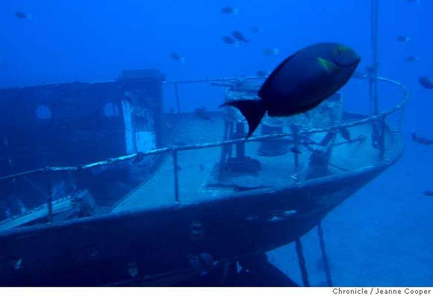 TRAVEL HAWAII CALLS -- A tropical fish swims by the submerged Carthaginian ship off Lahaina, Maui, as seen from the Atlantis submarine that offers excursions from Lahaina. 2/8/07. Jeanne Cooper / The Chronicle