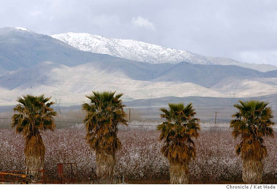 With Almond trees in bloom in the foreground snow can be seen on the foothills from Central Valley (100 miles south on hwy 5 and Kamm Ave) on Tuesday February 26, 2007.  Kat Wade/The Chronicle Photo: Kat Wade