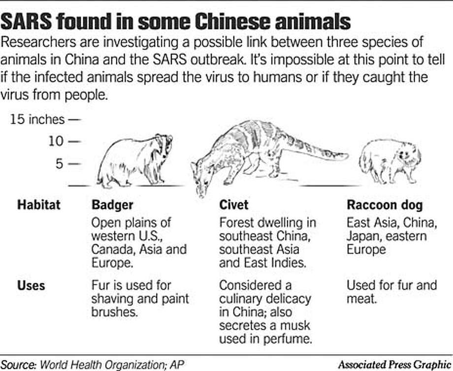 SARS Found in Some Chinese Animals. Associated Press Graphic