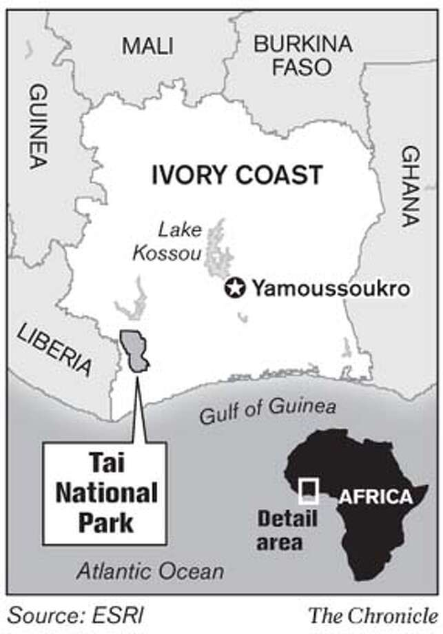 Tai National Park. Chronicle Graphic