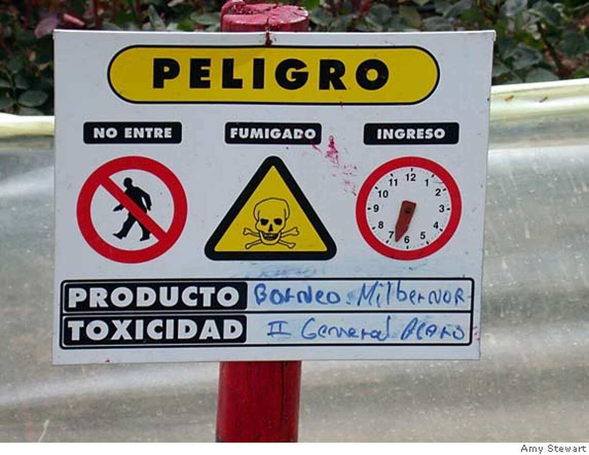At another farm in Ecuador, a sign indicates when workers can safely re-enter a greenhouse after spraying. Photo by Amy Stewart