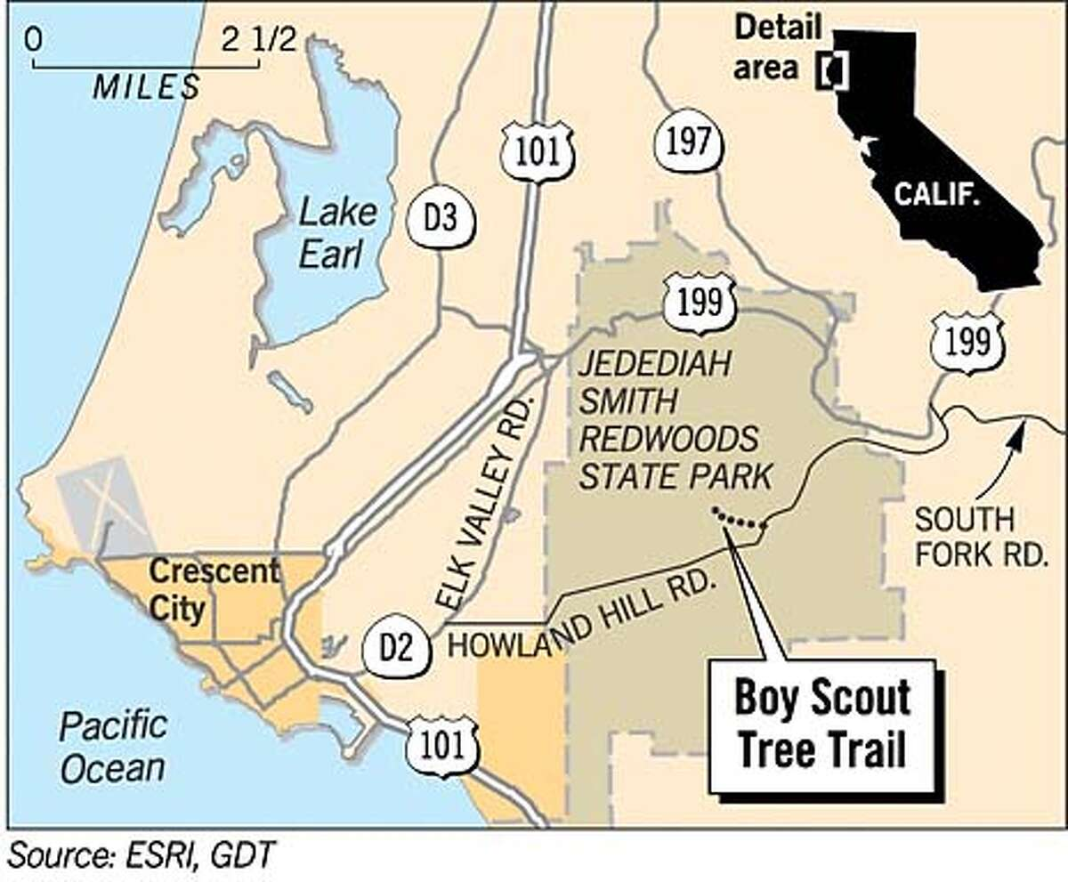 Boy Scout Tree Trail. Chronicle Graphic