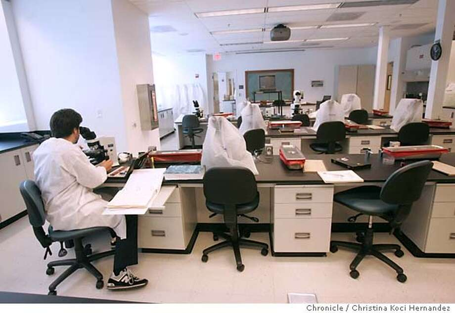 CHRISTINA KOCI HERNANDEZ/CHRONICLE  A young student , Morgan Cook, in a nearly empty training lab.Shortage of scientists at CALIFORNIA PUBLIC HEALTH LAB IN RICHMOND, 850 MARINA BAY PKWY. Photo: CHRISTINA KOCI HERNANDEZ