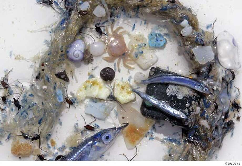 "The contents of the ""Yellow Thing"" after a trawl in the high seas of the Central North Pacific Ocean, October 30, 2006. The environmental group Greenpeace is highlighting the threat plastic poses to the world's oceans. Old toothbrushes, beach toys and used condoms are part of a vast vortex of plastic trash in the middle of the Pacific Ocean, threatening sea creatures that get tangled in it, eat it or ride on it, a new report says. FOR EDITORIAL USE ONLY NO ARCHIVE REUTERS/Alex Hofford/Greenpeace/Handout (UNITED STATES)  Ran on: 11-06-2006  The contents of the ocean sampler after a trawl by Greenpeace's Esperanza in the North Pacific.  Ran on: 11-06-2006  The contents of the ocean sampler after a trawl by Greenpeace's Esperanza in the North Pacific. Photo: HO"