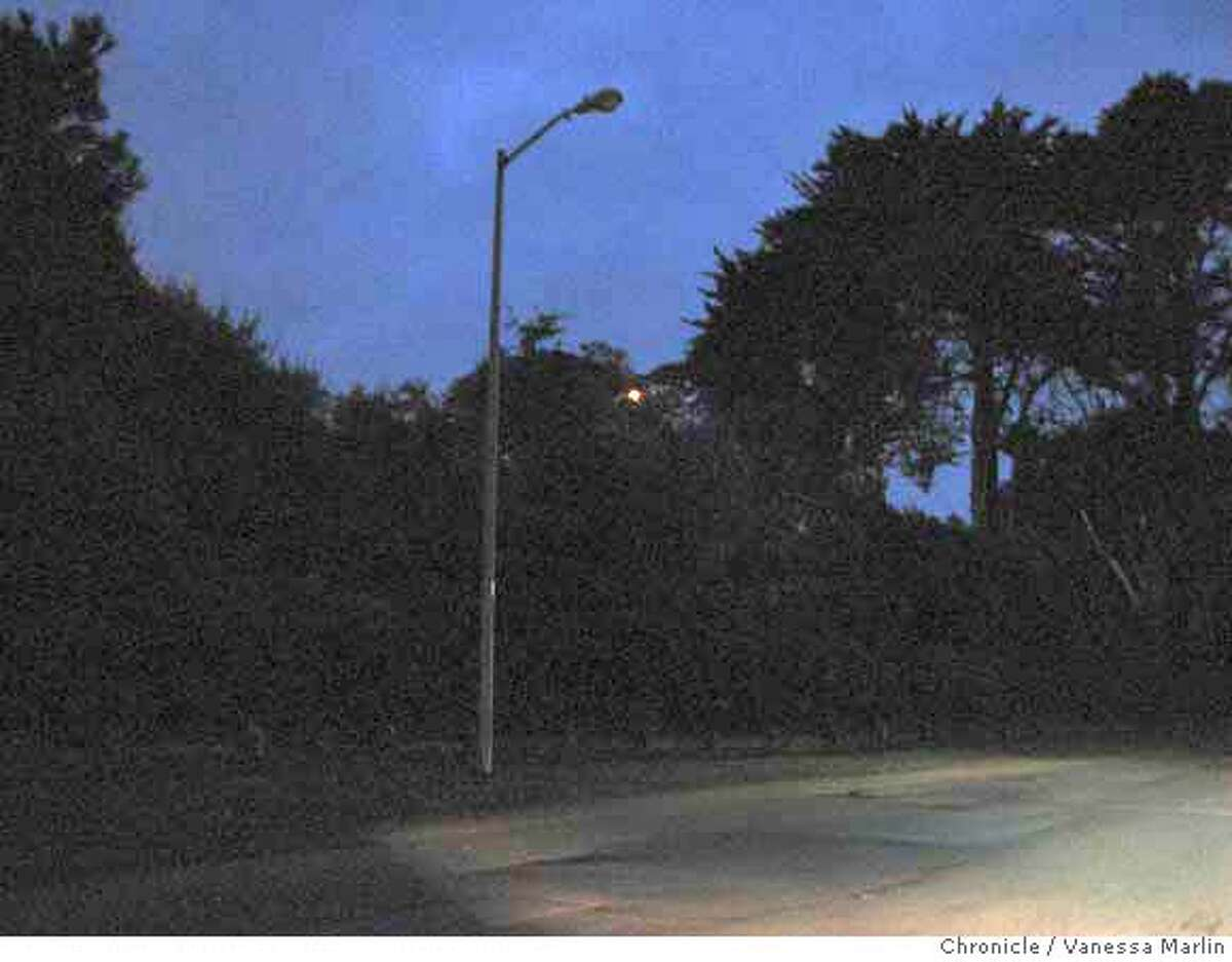 CW_NO_COPPER_LIGHT Thieves are allegedly stealing copper wiring out of the lamps in Golden Gate Park. Shoot date: 1/31/2007 Location: MLK Drive in GGPark Vanessa Marlin / The Chronicle Ran on: 02-04-2007 MANDATORY CREDIT FOR PHOTOGRAPHER/ - MAGS OUT