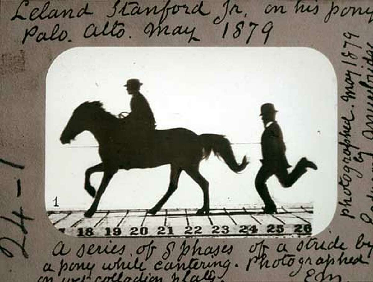 LELAND STANFORD ON HIS PONY 'GYPSY' - PHASES OF A STRIDE BY A PONY WHILE CANTERING by Eadweard Muybridge, 1879 from a series of lantern slides glass collodion positives NOTE: Please indicate