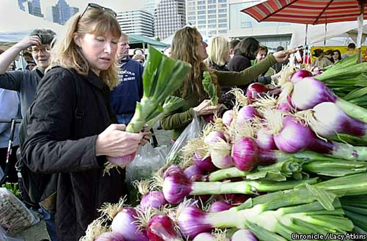 Mary Sheppard pciks ou t a couple of Sweet Stockton Red onions from the Balakian Farms at the new Farmers Market moves into the renovated San Francisco Ferry Building along the Embarcadero. 4/26/03 in San Francisco. Lacy Atkins/San Francisco Chronicle / The Chronicle