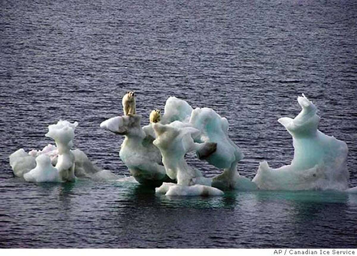 This photo released by the Canadian Ice Service Friday Feb. 2, 2007 and taken by photographer Dan Crosbie in 2004 shows two polar bears on a chunk of ice in the arctic off Northern Alaska. The words of warning about global warming from the top panel of international scientists Friday Feb. 2, 2007 were purposely blunt: