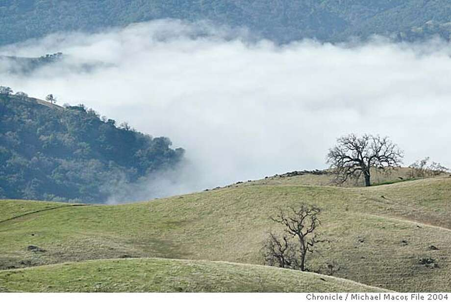 parks082_mac.jpg Fog fills a valley in the Ohlone Wilderness. Tag along with East Bay Regional Parks Wildlife Program Manager Joe DoDonato as we travel through the Ohlone Wilderness, the largest area of wildland in the East Bay.  Event on 1/12/04 in Sunol. MICHAEL MACOR / The Chronicle MANDATORY CREDIT FOR PHOTOG AND SF CHRONICLE/ -MAGS OUT Photo: MICHAEL MACOR