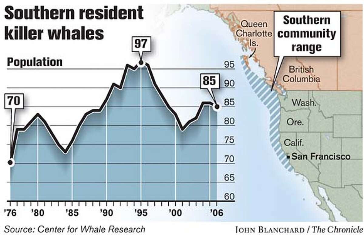 Southern Resident Killer Whales. Chronicle graphic by John Blanchard