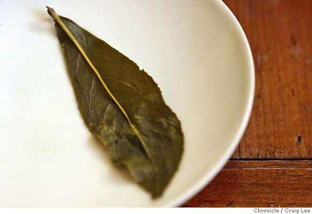 TEA24_355_cl.JPG  Story on premium, whole leaf teas. This is at Far Leaves, a neighborhood tea house at 2979 College Avenue at Ashby in Berkeley. Donna Lo is the proprietor. Photo of a tea leaf of Li-Shan Hogh Mountain Oolong after it has been infused with water. Before the water infusion, it is dry and tightly rolled up.  Event on 1/15/07 in Berkeley. photo by Craig Lee / The Chronicle MANDATORY CREDIT FOR PHOTOG AND SF CHRONICLE/ -MAGS OUT Photo: Photo By Craig Lee