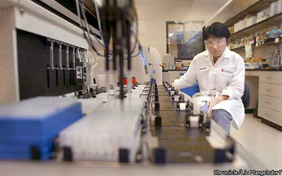 Gilead Sciences Inc labs Research Associate Xiaoping Qi (cq) watches the Multiprobe Robotic Liquid Handling System selected and distribute compound that she is working with. She is working in the High Throughput Screeninig lab Photo by Liz Mangelsdorf/sf chronicle Photo: Liz Mangelsdorf