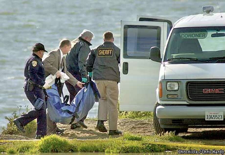 Laci Peterson Dead Body Pictures Photo: chris hardy