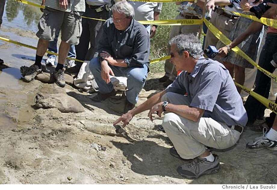 bones_006_suzuki.jpg  from left: Steve Marley, amateur paleontologist, and Mark Goodwin, Ass. Diirector of UC Museum of Paleontology. Goodwiin begins to identify some of the bones found along the Guadalupe River pointing to what he believes to be a large limb bone from a mammoth. Santa Clara water district folks found some fossilized bones along the Guadalupe River. An expert from UC Berkeley to be there at 1:30 to see if they are ancient and belonged to a mastadon or something equally cool, or perhaps a cow or horse, which isn't so cool. Metro will be doing a story regardless.  Photo taken on 7/13/05 in San Jose, CA. Photo by Lea Suzuki/ The San Francisco Chronicle Photo: Lea Suzuki