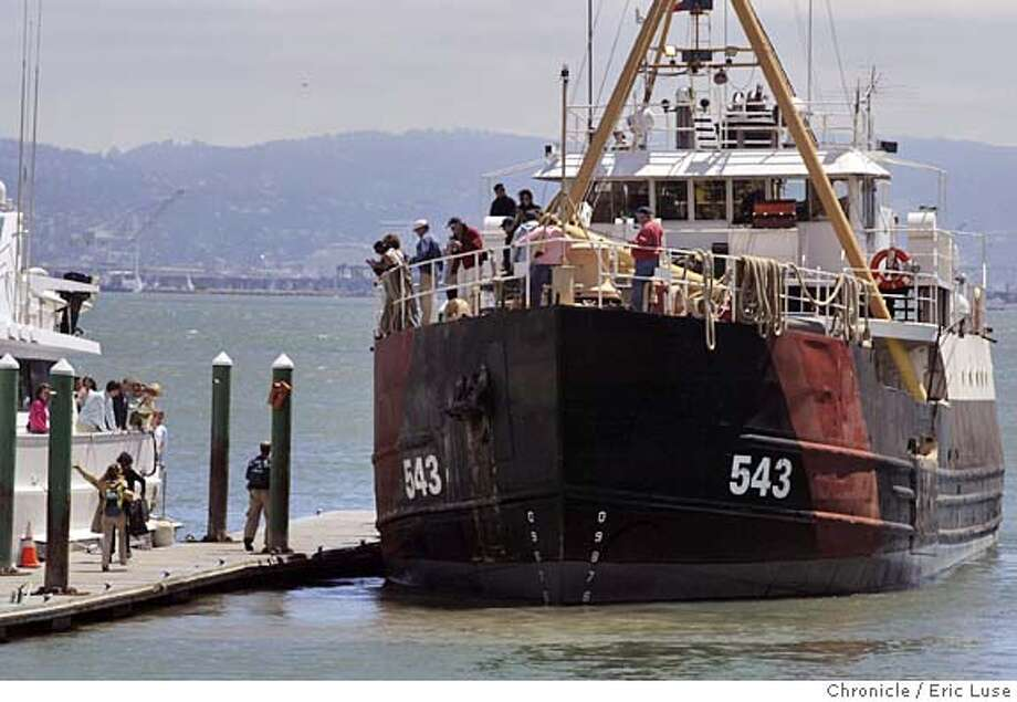 expedition11_123_el.JPG  Last minute arrivals get a rousing cheer from fellow passengers as the White Holly is leaving dockside, they managed to jump aboard. The White Holly, a 133-foot-long Word War II-era buoy tender built in Napa, has been rebuilt as an oceanographic research vessel. It leaves July 20 on its maiden research expedition to the Line Islands south of Hawaii, with 20 scientists affiliated with Scripps Institute of Oceanography who will be studying pristine coral reefs of uncharted atolls (the least-disturbed coral reefs in the world) to compare with current levels of coral degradation of inhabited reefs.... Saturday/July 9 morning, the White Holly leaves at 11 a.m. for a cruise around the bay.  Event on 7/9/05 in San Francisco Eric Luse / The Chronicle MANDATORY CREDIT FOR PHOTOG AND SF CHRONICLE/ -MAGS OUT Ran on: 07-14-2005  White Holly has been used as a live-aboard training ship and also for salvage operations and bay cruises for marine biology students. Photo: Eric Luse