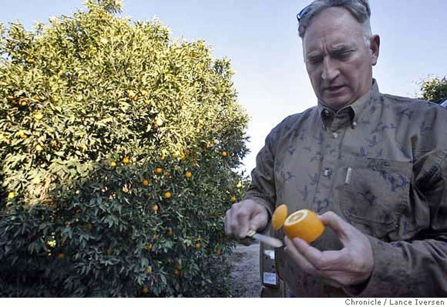 CITRUS2068.JPG  Visalia's Citrus growers have been hit hard by the current cold snap, including Christopher Lange owner of Beresford Ranches. January 16, 2007 .VISALIA.  By Lance Iversen/San Francisco Chronicle MANDATORY CREDIT PHOTOG AND SAN FRANCISCO CHRONICLE/ MAGS OUT Photo: By Lance Iversen