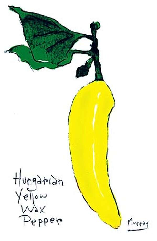 Hungarian Yellow Wax Pepper Photo: Tom Murray