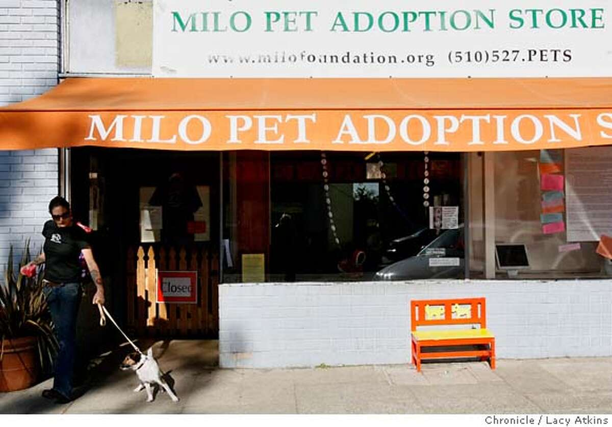 Milo Foundation, a nonprofit animal rescue, is closing their doors on Solano Ave, in June after along fight with the city of Berkeley. because neighbors complained so much about barking dogs, dog pee, etc. Ca. (Lacy Atkins/The Chronicle) MANDATORY CREDITFOR PHOTGRAPHER AND SAN FRANCISCO CHRONICLE/ -MAGS OUT