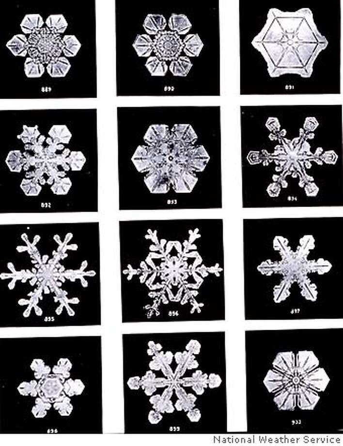 These snowflakes were photographed in 1902 by Vermont farmer Wilson Bently, who spent 50 years documenting the delicate winter beauty he found at his farm. Photo courtesy of the National Weather Service