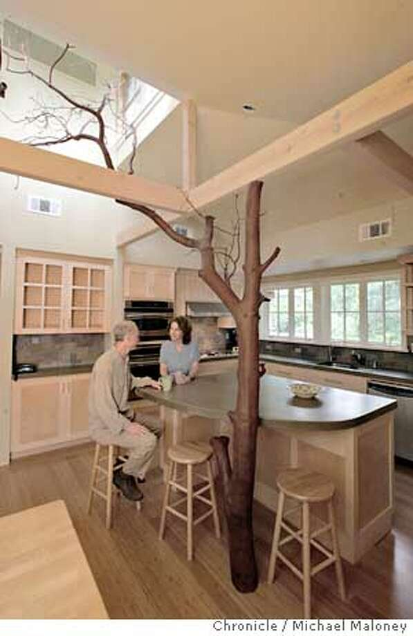 Gino and Gail Brager enjoy a cup of coffee under the branches of their indoor tree.  Gail Brager, a Cal architecture professor, has remodeled her kitchen to incorporate a large madrone tree. She and her husband Gino Brager found the tree in Sonoma County, had it cut and installed in their Orinda home.  Photo by Michael Maloney / San Francisco Chronicle Photo: Michael Maloney