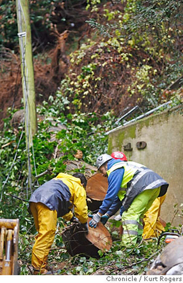 Crews from the Mill Valley Parks department remove a Bay tree that fell onto Cascade Way along side the Dipsea in Mill Valley. They need to get the tree out of the way before PG&E can restore power to the area.  THURSDAY, JANUARY 4, 2007 KURT ROGERS/THE CHRONICLE MILL VALLEY THE CHRONICLE  SFC Photo: KURT ROGERS/THE CHRONICLE