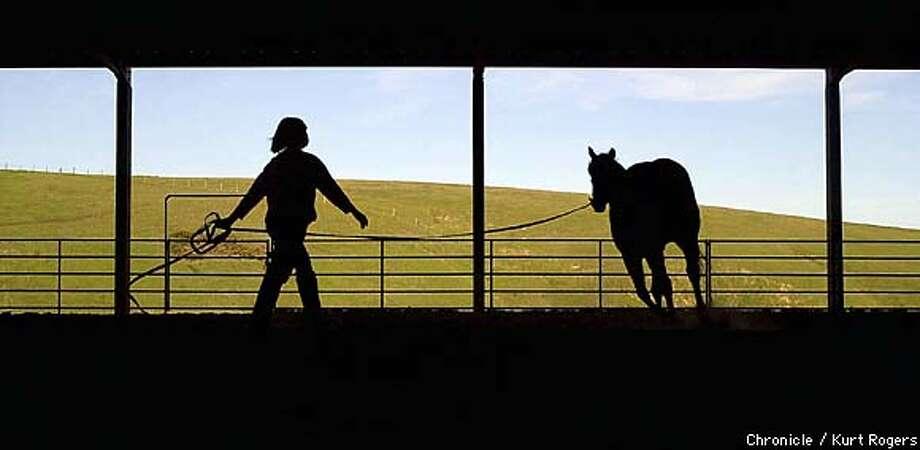 Alyssa Aubrey works with Jetstarr during the seminar.  Leadership and Horses run by horse master Ariana Strozzi she runs a leadership coaching company that integrates horses to help managers learn about their strengths and weaknesses.  Photo By Kurt Rogers Photo: Kurt Rogers