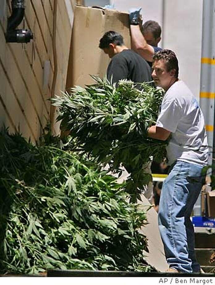 Drug Enforcement Agents remove marijuana plants from a dispensary Wednesday, June 22, 2005, in San Francisco. (AP Photo/Ben Margot) Photo: BEN MARGOT