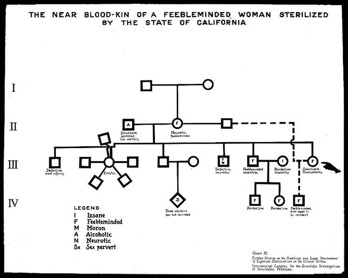 This diagram, taken from the papers of noted eugenicist Harry Laughlin, was used to brief pre-World War II Nazis. Courtesy Truman State University