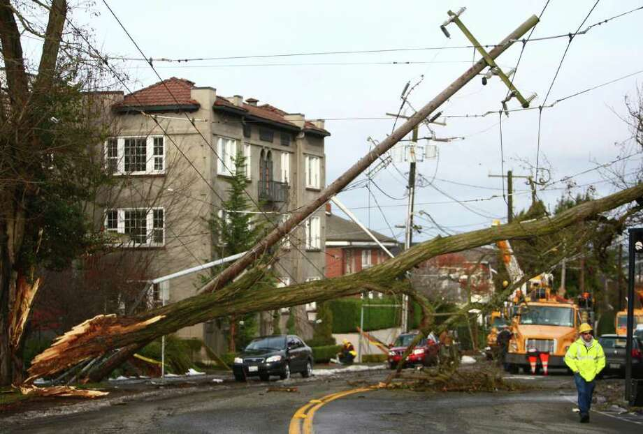Electrical lines are a tangled mess after a winter storm brought down a large branch onto the lines on Saturday, January 21, 2012 on 10th Avenue East in Seattle's Capitol Hill neighborhood. The massive branch pulled down power lines and Metro bus trolley lines. The mess has rerouted bus lines and closed the road to traffic at East Blaine Street. Photo: JOSHUA TRUJILLO / SEATTLEPI.COM