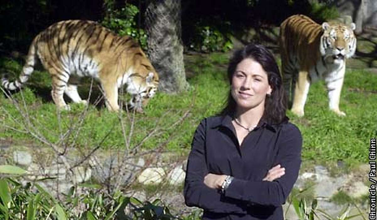 Veterinarian Kim Haddad is launching a national coalition aimed at stopping the trade and misuse of exotic animals. Haddad is an on-call vet at the SF Zoo, home to tigers Emily and Tony (background). PAUL CHINN/SF CHRONICLE
