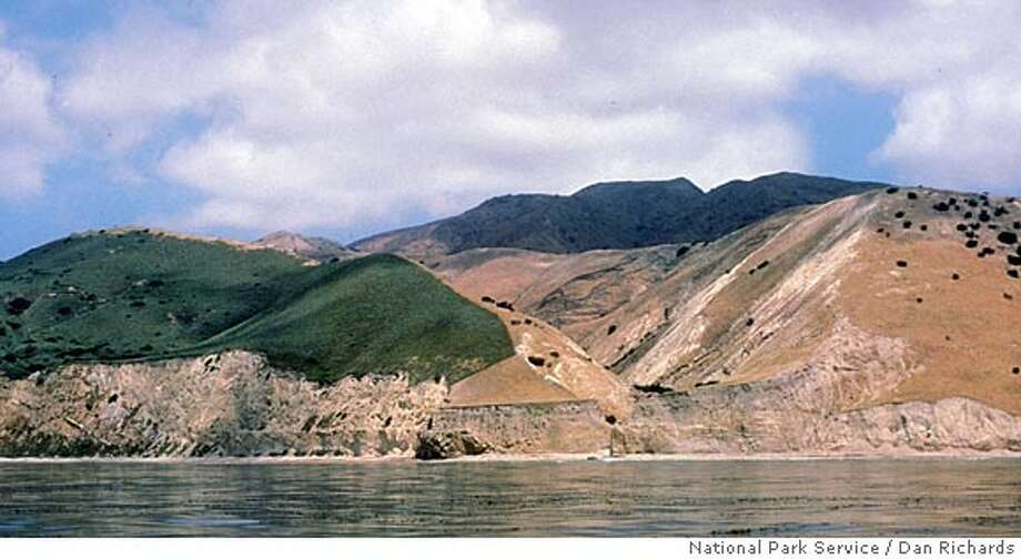 ** FILE ** In this 1986 file photo provided by the National Park Service, Santa Cruz Island is seen off the coast near Ventura, Calif. The brown area in the center of the photo, flanked by green vegetation, is where the plants have been denuded by the island's feral pig population. A program began in April 2005 to eradicate thousands of feral pigs that destroy native plants and attract predators that feed on both the pigs and the tiny, endangered Channel Island foxes, whose numbers have fallen drastically. Each pig's death brings conservationists closer to their ultimate goal of saving the endangered foxes. (AP Photo/National Park Service, Dan Richards, File) PHOTO PROVIDED BY THE NATIONAL PARK SERVICE. PHOTO TAKEN IN 1986. 7TH OF 7 PHOTOS Photo: DAN RICHARDS