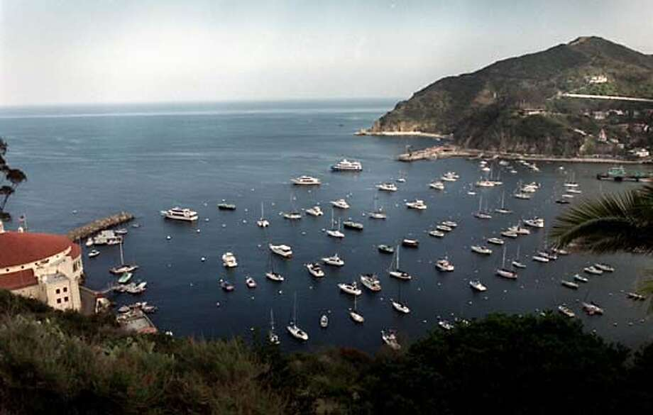 TRAVEL-CATALINA-HARBOR -- The bay at Catalina Island, off the Southern California coast., is shown on April 4, 2003. On a busy day, as many as 15,000 people might arrive from the mainland to visit Avalon, the one-square-mile city on the island. (AP Photo/ Los Angeles Daily News, Tina Burch) Photo: TINA BURCH