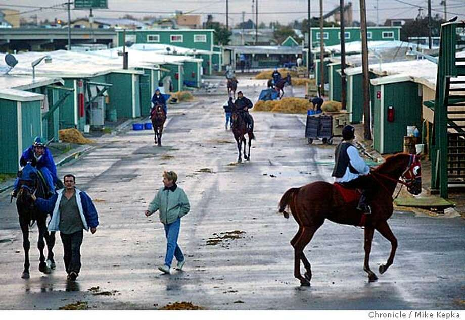 Despite heavy early morning rains, trainers and riders are out in force for their morning workout at Golden Gate Fields.  Golden Gate fields is wide awake ealy in the mornings preceeding opening day planned for November 11th. 10/26/04  MIKE KEPKA/The Chronicle Photo: MIKE KEPKA