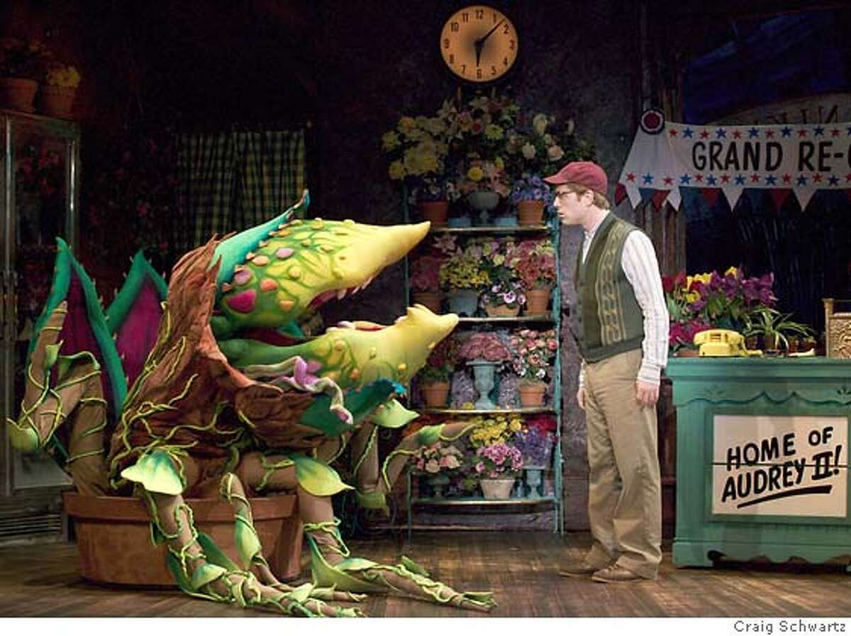 AUDREYROSE10_02.JPG Anthony Rapp (Seymour). Audrey II puppeteered by Michael Latini and Paul McGinnis in A Little Shop of Horrors. CRAIG SCHWARTZ / Best of Broadway-SF Datebook#Datebook#Chronicle#11/10/2004#ALL#Advance##0422456893