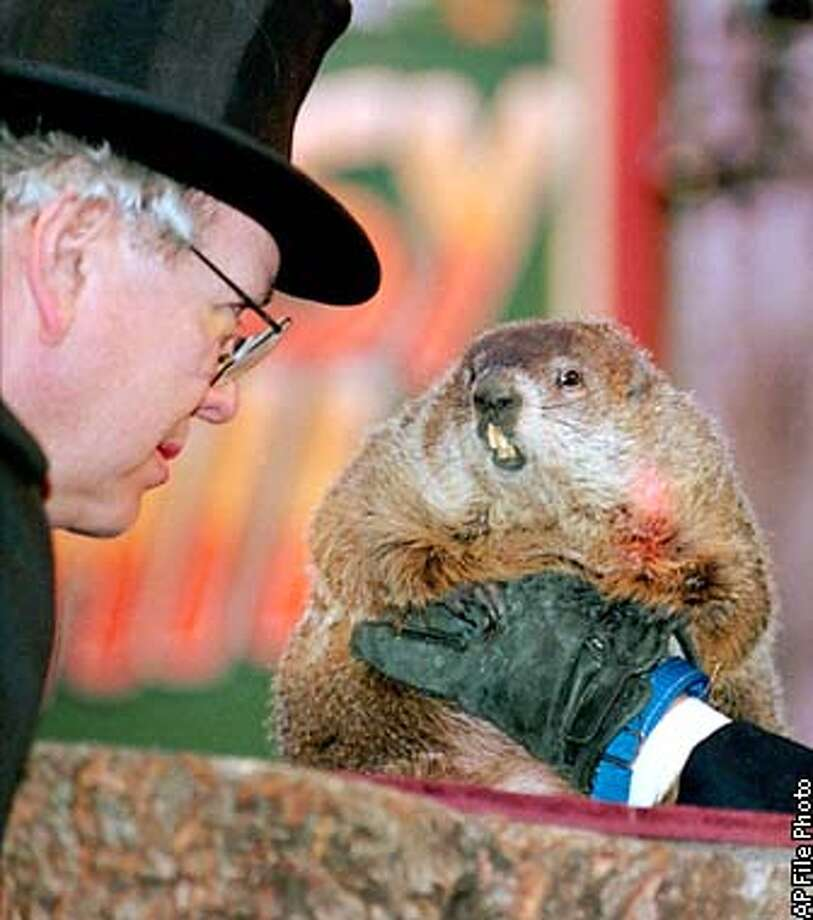 **FILE** Punxsutawney Groundhog Club President Bill Cooper watches as Punxsutawney Phil emerges from his burrow to see his shadow Feb. 2, 1998, on Gobbler's Knob in Punxsutawney, Pa., indicating six more weeks of winter. Chivalry isn't dead, at least, not among groundhogs. A Penn State University researcher says groundhogs might emerge from their dens in February, celebrated each year on Groundhog Day, in order to meet members of the other sex before the March mating season. (AP Photo/Gene J. Puskar,file) Photo: GENE J. PUSKAR