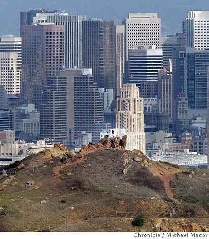 Corona Heights rises 510' giving viewers a spectacular view around the city. Shot from Tank Hill. Walking man series by Tom Graham. This time it is on the 53 hills of San Francisco. 10/30/04 San Francisco, CA Michael Macor / San Francisco Chronicle Photo: Michael Macor
