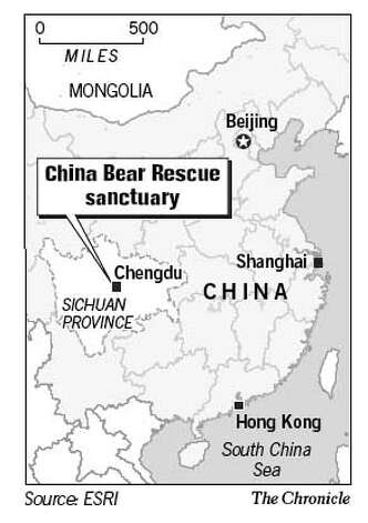 China Bear Rescue Sanctuary. Chronicle Graphic