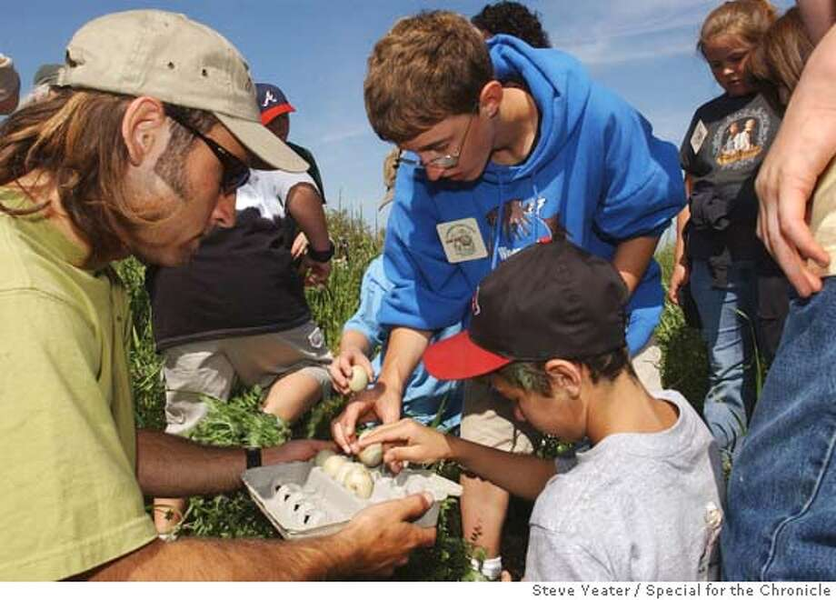 Neil Reynolds, 12, (center, blue sweater) and classmates from Richvale Elementary School put duck eggs that they found into a container in a rice field outside of Richvale, Calif., on Thursday, April 21, 2005.  Photo by Steve Yeater/For The Chronicle Photo: Steve Yeater/For The Chronicle