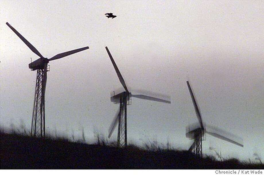 CCWIND-03-C-04AUG99-CF-KW - Silhouetted against the back drop of an early morning sunrise, a hawk hovers on the drafts above a few wind mills off of Alta Mont Pass Road. The windmills have been blamed for the deaths of many birds in the area, including the Golden Eagle. SAN FRANCISCO CHRONICLE PHOTO BY KAT WADE Photo: KAT WADE