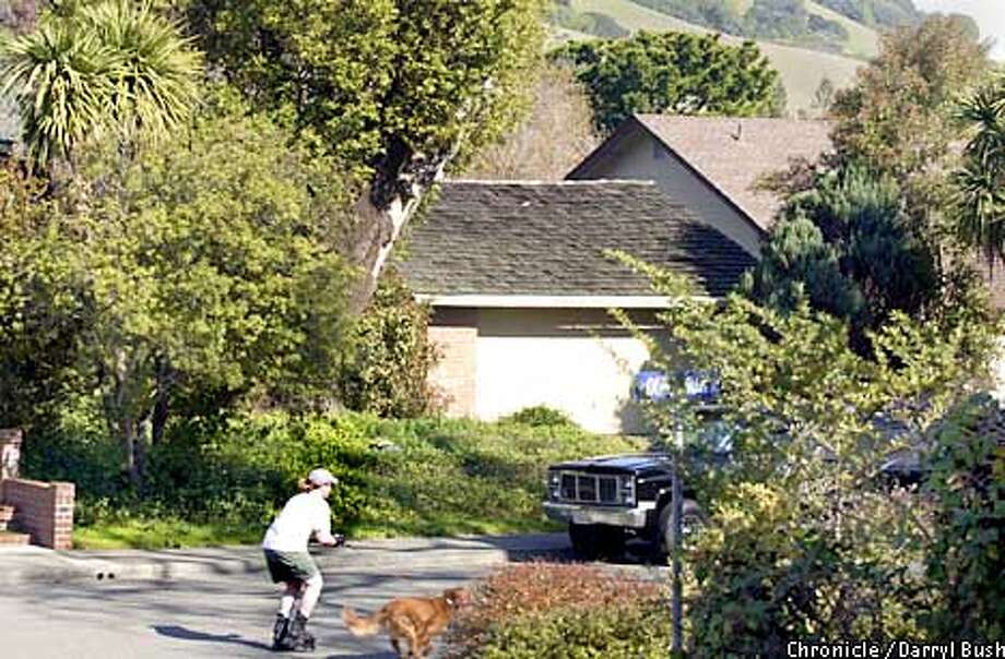 A skater with dog goes by the house at 35 Mt. Muir Ct. (in background with ivy front yard and garage) in Marinewood. Photo by Darryl Bush Photo: Darryl Bush