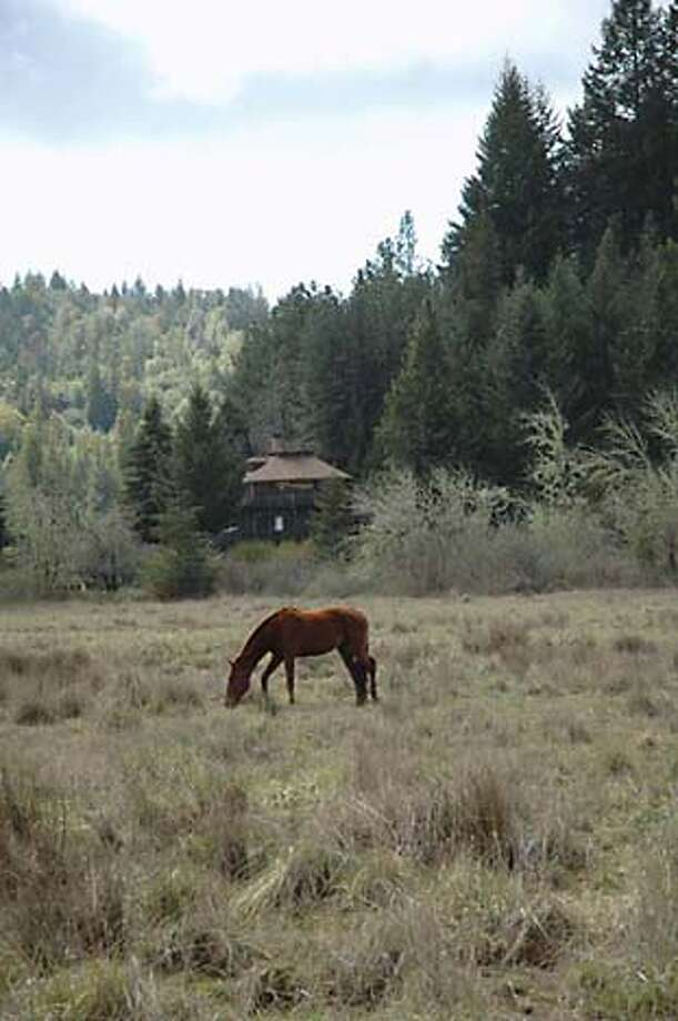 A horse in front of the Octagon House on Sherwood Road in Willits. Chronicle photo by Christine Delsol