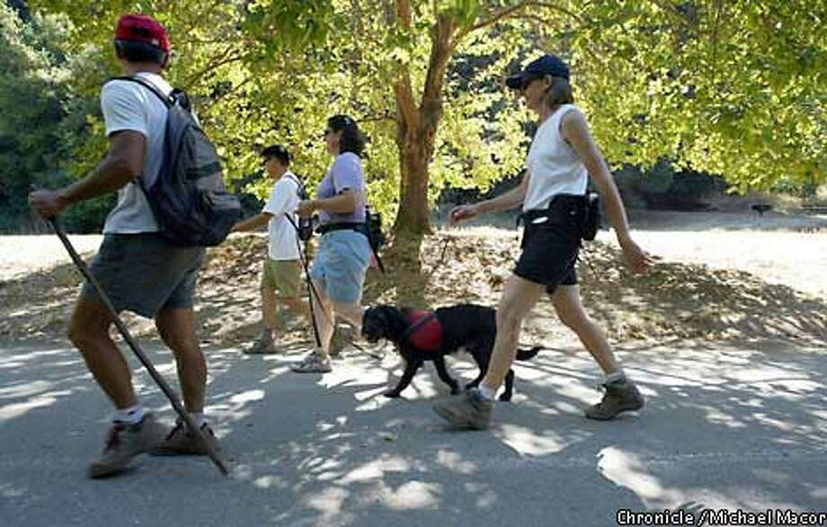 A Sierra Singles walk through Redwood Regional Park included (from left) Albert Chiu, Nelson Owyang, Lauren Westreich and April Jones. Chronicle photo by Michael Macor