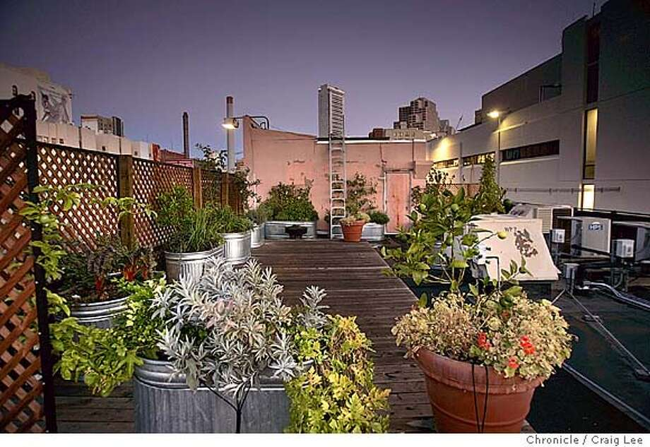 Overall view of the rooftop fruit and vegetable garden above the Food and Wine dept.  Event on 9/17/04 in San Francisco. Craig Lee / The Chronicle MANDATORY CREDIT FOR PHOTOG AND SF CHRONICLE/ -MAGS OUT Food#Food#Chronicle#10/13/2004##Advance##0422366289 Photo: Craig Lee