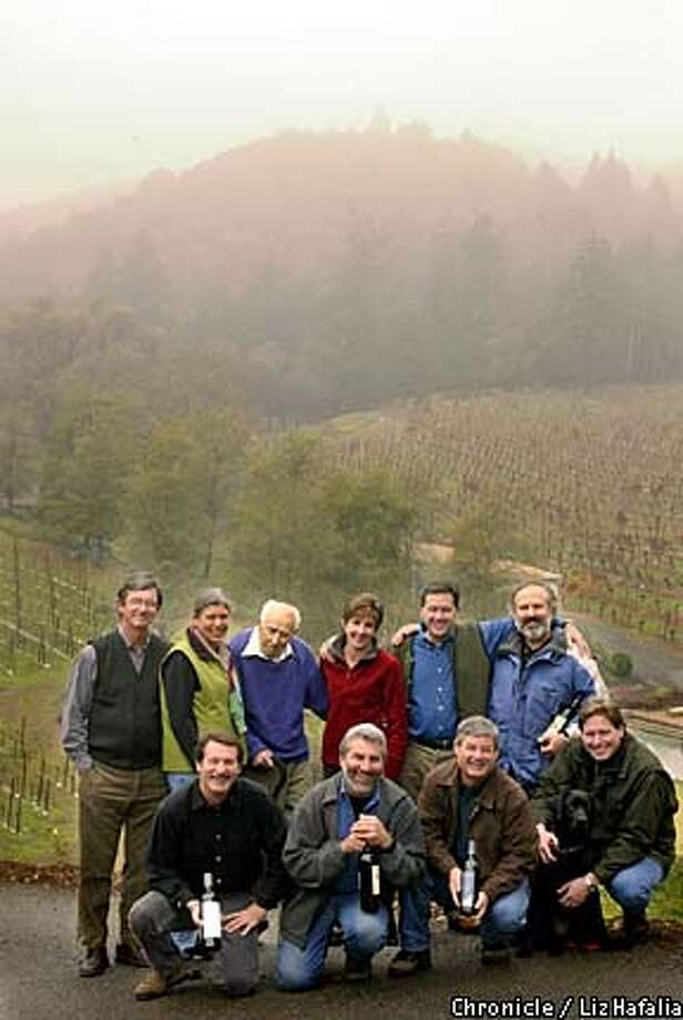 Diamond Mountain vintners meet at the fog-shrouded hillside of Diamond Creek Vineyards in Calistoga. They include (back row, left to right) Bill Dyer, Dawnine Dyer, owners of Dyer Vineyards; Al Brounstein, owner of Diamond Creek Vineyards; Maureen Taylor, co-owner of Diamond Terrace; Rudy von strasser, owner of von Strasser Winery; and Phil Steinschriber, winemaker at Diamond Creek Vineyards. Bottom row, left to right: Peter Thompson, owner of Andrew Geoffrey Vineyards; Gerard Zanzonico, winemaker at Stonegate Winery; Hal Taylor, co-owner of Diamond Terrace; and Rob Hunter, winemaker at Sterling Vineyards. Chronicle photo by Liz Hafalia