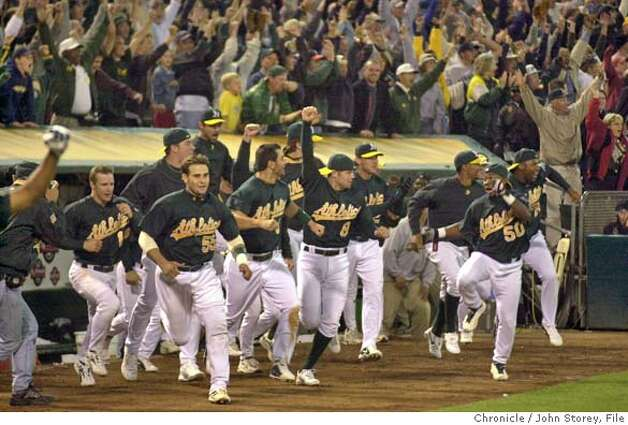 athletics188_jrs.jpg  The Oakland Athletics react to Adam Melhuse's single in the bottom of the 10th inning that drove in the winning run against the Texas Rangers on Tuesday night, September 23, 2003. With the win and the Seattle Mariner's loss in Anaheim, Oakland clinched the American League Division West Title. The A's vs. the Texas Rangers at the Network Coliseum.  9/23/03 in Oakland. JOHN STOREY / The Chronicle MANDATORY CREDIT FOR PHOTOG AND SF CHRONICLE/ -MAGS OUT Photo: JOHN STOREY