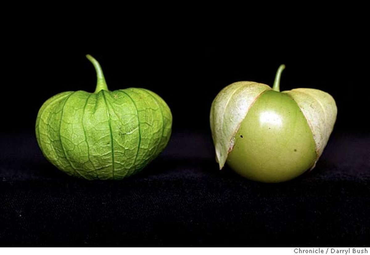 evans24_001_db.jpg tomatillos for Home & Garden page. 7/21/04 in San Francisco Darryl Bush / The Chronicle Ran on: 07-24-2004 Tomatillos in their paper lantern stage (left) and mature (right). MANDATORY CREDIT FOR PHOTOG AND SF CHRONICLE/ -MAGS OUT