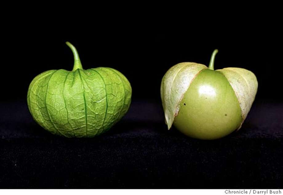evans24_001_db.jpg  tomatillos for Home & Garden page.  7/21/04 in San Francisco  Darryl Bush / The Chronicle Ran on: 07-24-2004  Tomatillos in their &quo;paper lantern'' stage (left) and mature (right). MANDATORY CREDIT FOR PHOTOG AND SF CHRONICLE/ -MAGS OUT Photo: Darryl Bush