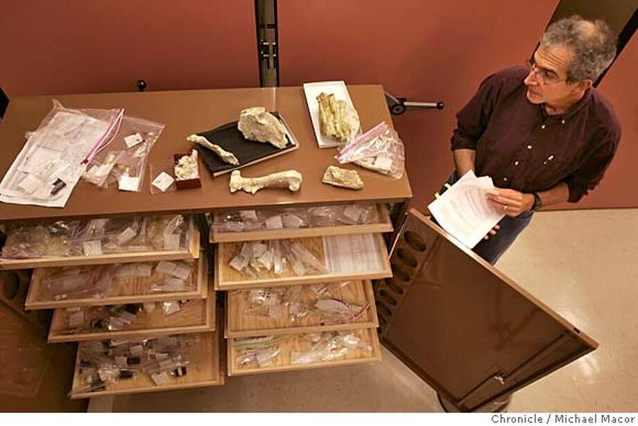 ucbones_083_mac.jpg UC Berkeley Vertibrate Paleontologist, Mark Goodwin with the collection, sorted and kept in the various drawers below. A collection of 1,200 fossils recovered from a site 3 miles outside of Fresno, Ca., in now in the hands of the Paleontology Department at UC Berkeley. 2/2/05 Berkeley, Ca Michael Macor / San Francisco Chronicle Mandatory Credit for Photographer and San Francisco Chronicle/ - Magazine Out Photo: Michael Macor