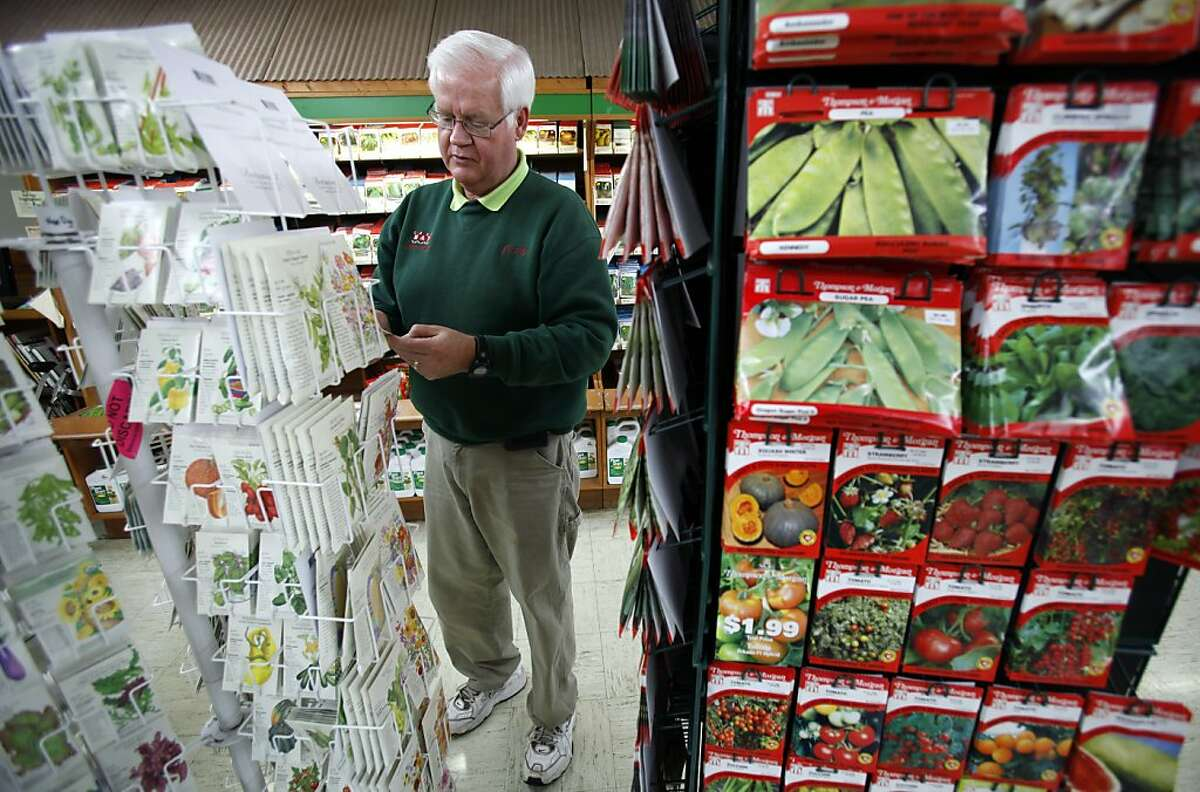 In this Tuesday, Jan. 24, 2012 photo, Manager Jerry Holub looks at seed packages on display at the Earl May Nursery and Garden Center in Des Moines, Iowa. The USDA announced Wednesday, Jan. 25, 2012 new maps for plant hardiness zones, a key to determine which plants can survive in what parts of the country. The government's official guide of colorful planting zones is being updated for a warmer 21st century. (AP Photo/Charlie Neibergall)